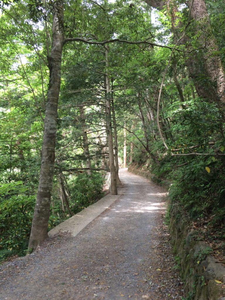 静かな山道