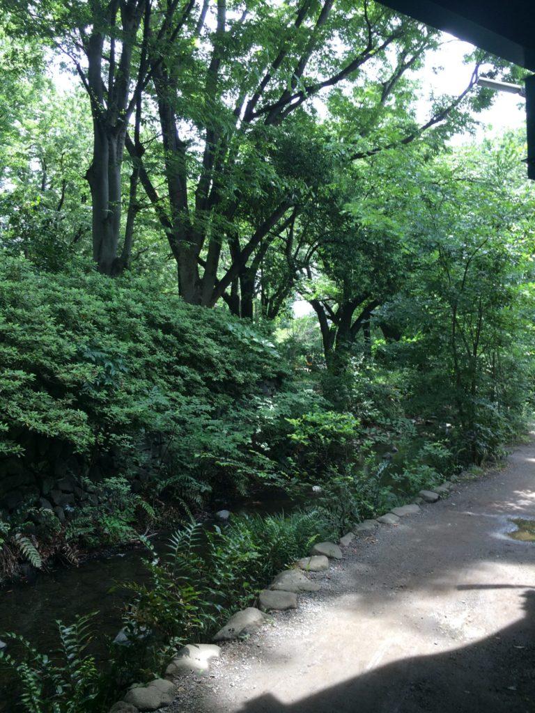 井の頭公園東へ高架下