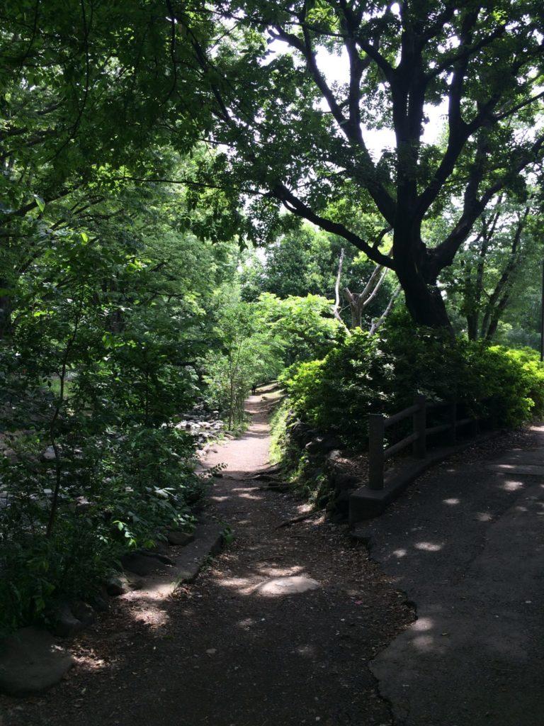 井の頭公園東へ細道