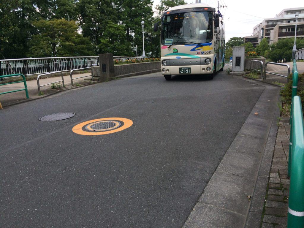 善福寺川へバス