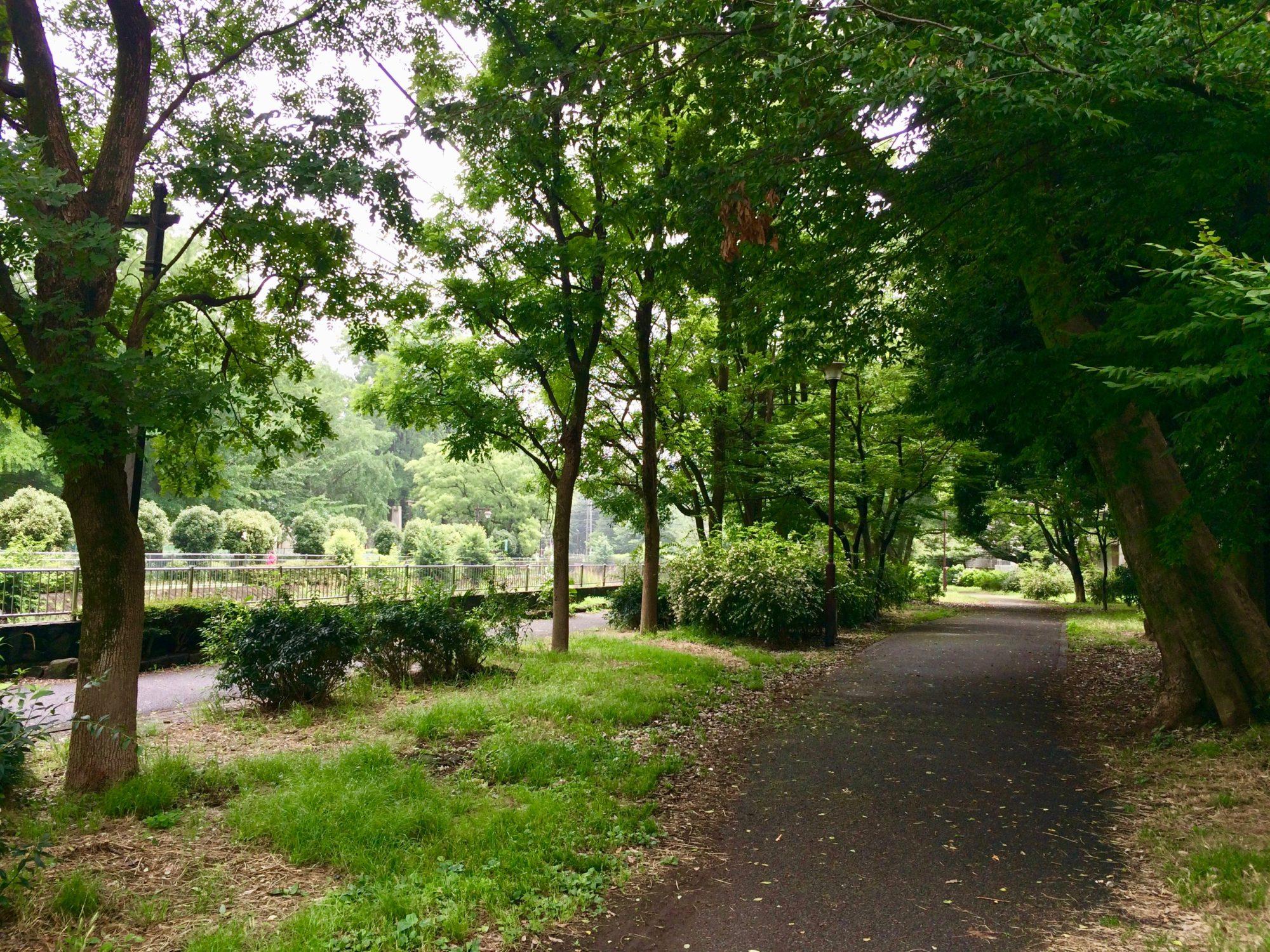 和田堀公園へ