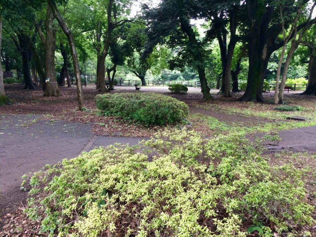 和田堀公園内