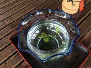六義園金魚鉢