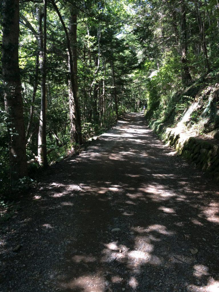 高尾山3号路頂上へ
