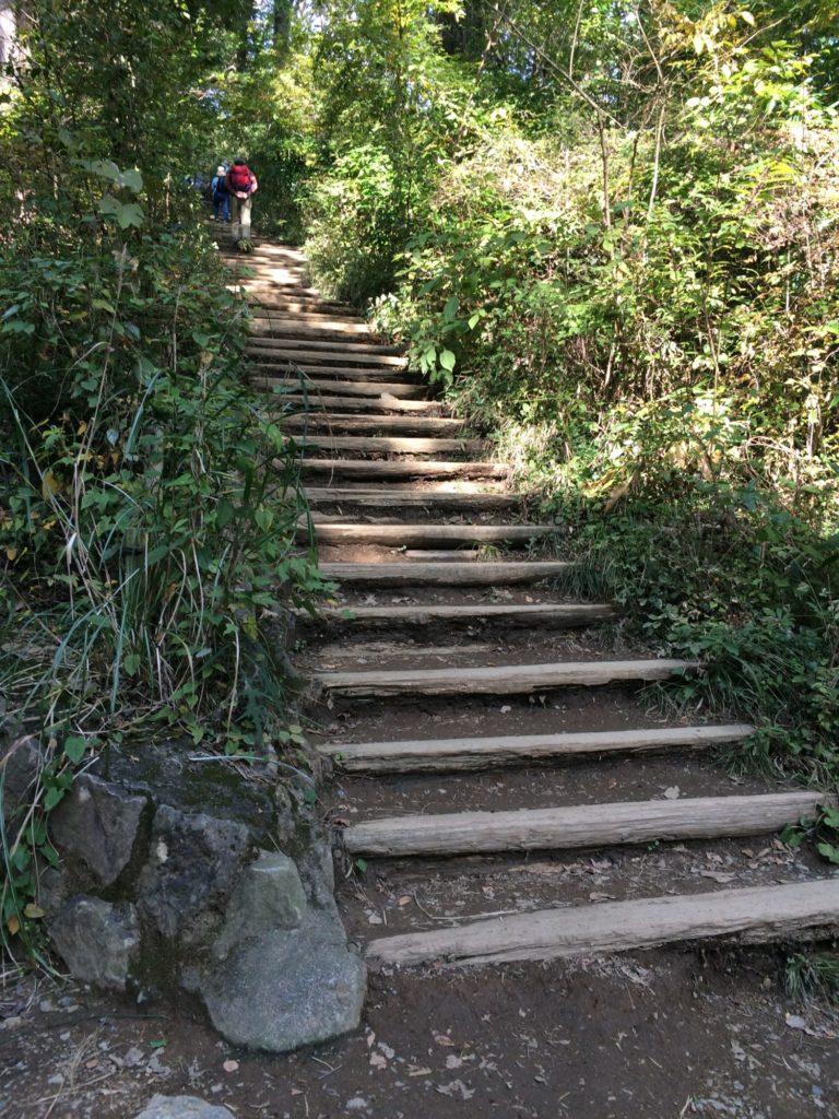 高尾山稲荷山コース階段